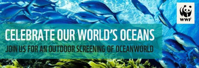 Oceanworld Outdoor Screening 2
